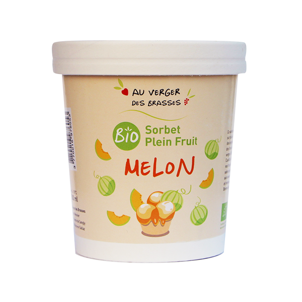 sorbet plein fruits melon